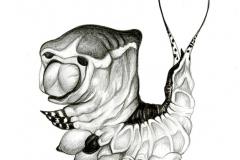 PussMothCaterpillar