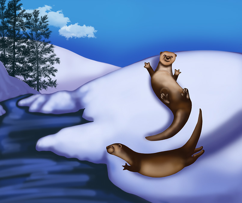 Otters_675